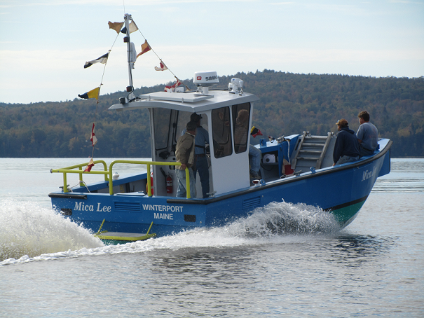 The Trans Cat 26 Fast Livery Vessel For The Coastal
